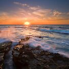 Reaching for the Sun by DawsonImages