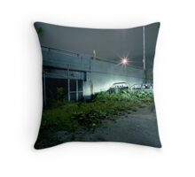 """Bridge Over Muddy Waters - """"Behind Chicago"""" Series Throw Pillow"""