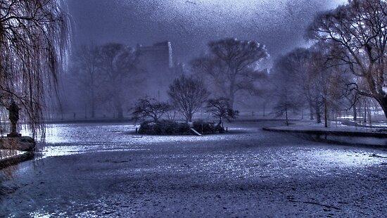 Snow in Boston Garden by LudaNayvelt