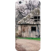 Cottage of Beauty iPhone Case/Skin