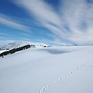 Footprints in the Snow by expatraveler