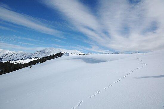 Footprints in the Snow by expatraveler