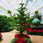 Christmas tree by Anastasia G