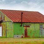 A Really Green Barn by WildestArt