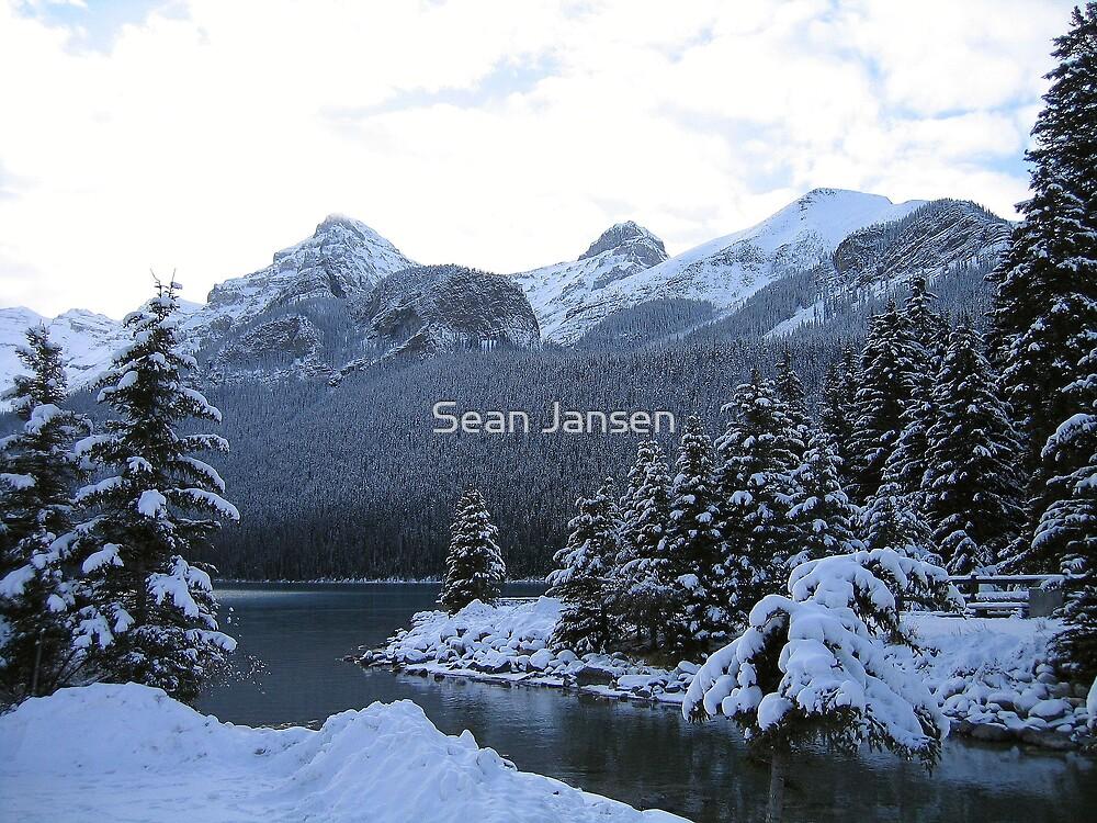 I'm Freezing by Sean Jansen
