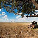 The Wheat Truck by David Haworth