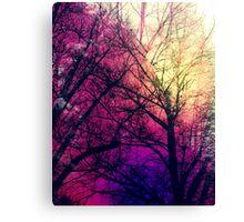 Lemony Violet Woods Canvas Print