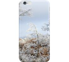 A Peaceful Quiet iPhone Case/Skin
