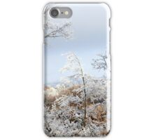 A Peaceful Quiet iPhone Case/Skin