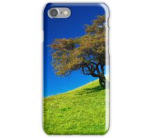 Single tree on a grassfield iPhone Case/Skin