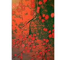 blossoms and bones Photographic Print