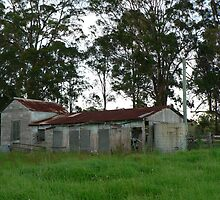 The Old Dairy Bales by louisegreen