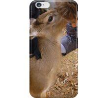 The Secrets Of Deer iPhone Case/Skin
