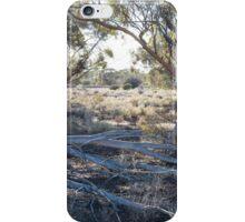 Australian Eucalyptus iPhone Case/Skin
