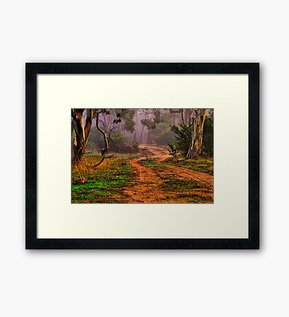"""""""Meandering into the Mist"""" Framed Print"""
