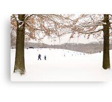 Winter scene outside in the snow Canvas Print