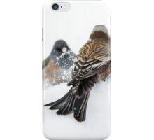 Rosy-Finch vs Junco iPhone Case/Skin