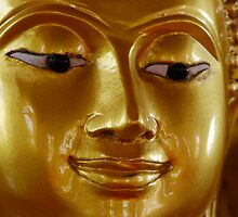 Golden Buddha by Dave Lloyd
