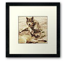 Big Bad Wolves Framed Print