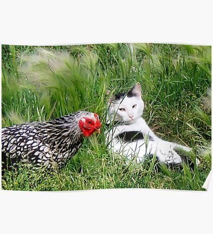 ~ You say chicken/ I say egg! ~ Poster