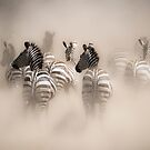 Dusted Stripes by Nathan Jermyn