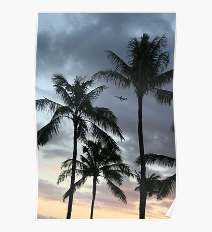 Just plane palm trees Poster