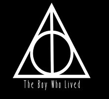 Deathly Hallows The Boy Who Lived by Natalie Schweitzer