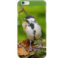 Birds  b 22 (c)(t) (on request Black and White) by Olao-Olavia / Okaio Créations  by fz 1000 26.08.2014 iPhone Case/Skin