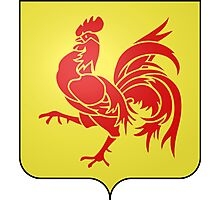 Coat of Arms of Wallonia  Photographic Print