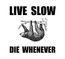 Live Slow Die Whenever Sloth Photographic Print