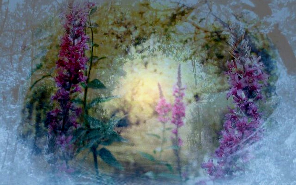The Celestial  Winter to  Eternal  Spring      by fiat777