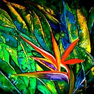 The Bird of Paradise by  Janis Zroback