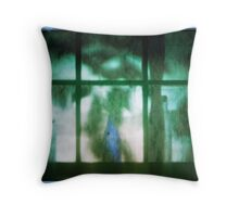 3 bottles; 6 panes Throw Pillow