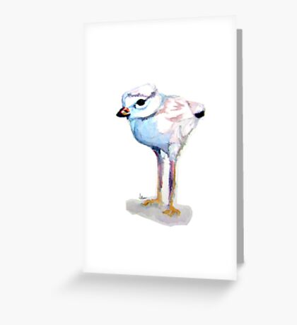 Sandpiper chick Greeting Card