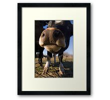 Come Around Here No More Framed Print
