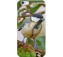 Birds  b 23 (c)(t) (on request Black and White) by Olao-Olavia / Okaio Créations  by fz 1000 26.08.2014 iPhone Case/Skin