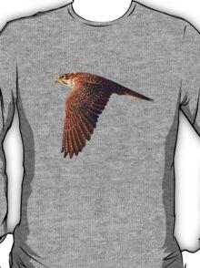 Prairie Falcon Tee T-Shirt