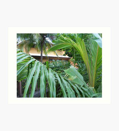 Jamaica Palms Art Print