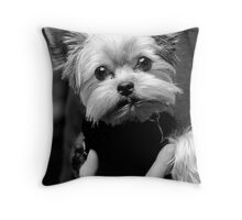 Yorkie Sweater Throw Pillow