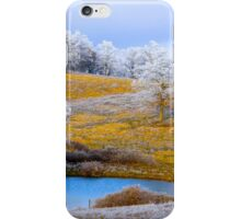 Winter Trees, Brannon Mt. NW Arkansas, USA iPhone Case/Skin