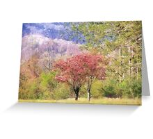 Valley Trees In Springtime Greeting Card