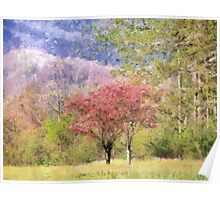 Valley Trees In Springtime Poster