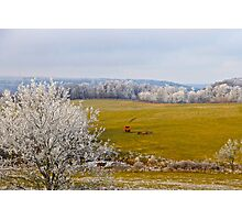 The Harvest Is In,  Brannon Mt. NW Arkansas, USA  Photographic Print