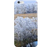 Scenic Winter, Brannon Mt. NW Arkansas, USA  iPhone Case/Skin