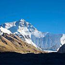 Everest by David Reid