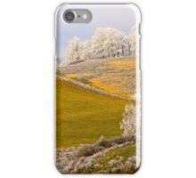 Golden Winter, Brannon Mt. NW Arkansas, USA iPhone Case/Skin