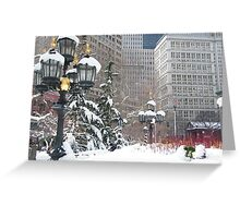 NY December City Hall Park, Snow View, New York Greeting Card