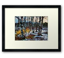 Snow fall on a winters day Framed Print