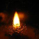 Single Flame by Tammy F