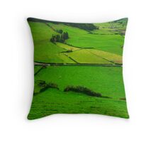 Pastures Throw Pillow